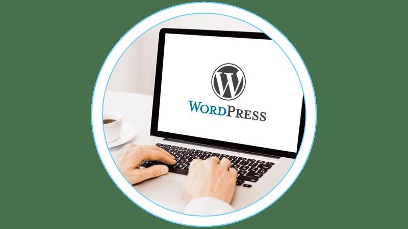 CMS WordPress. Управление и поддержка сайта